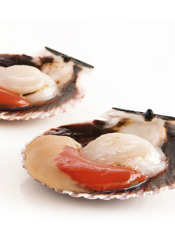 Scallop and scallop meat roe on