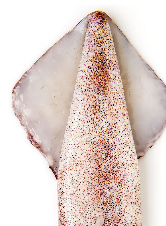 Whole round Indian squid